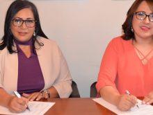 Miembros de Acroarte recibirán consultoría migratoria de la oficina de abogada Milagros Mejía